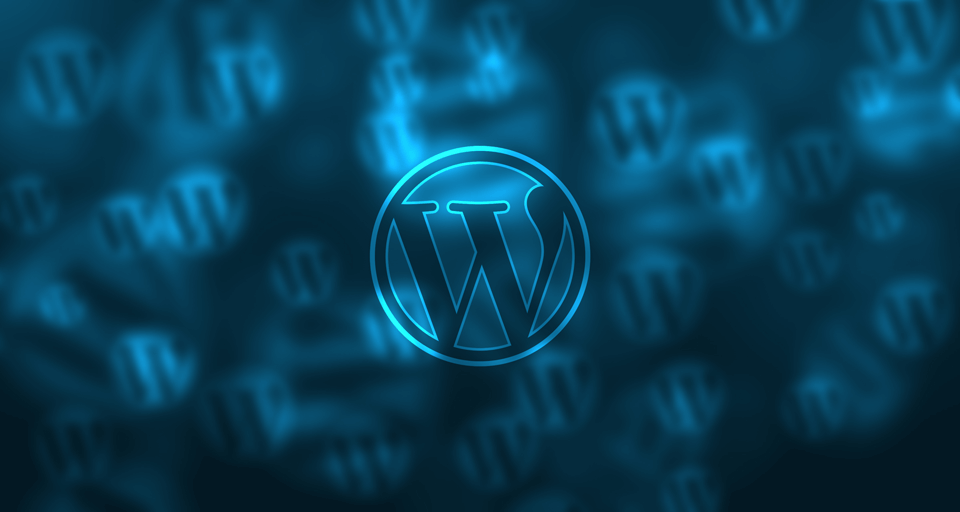 Wordpress(CMS)
